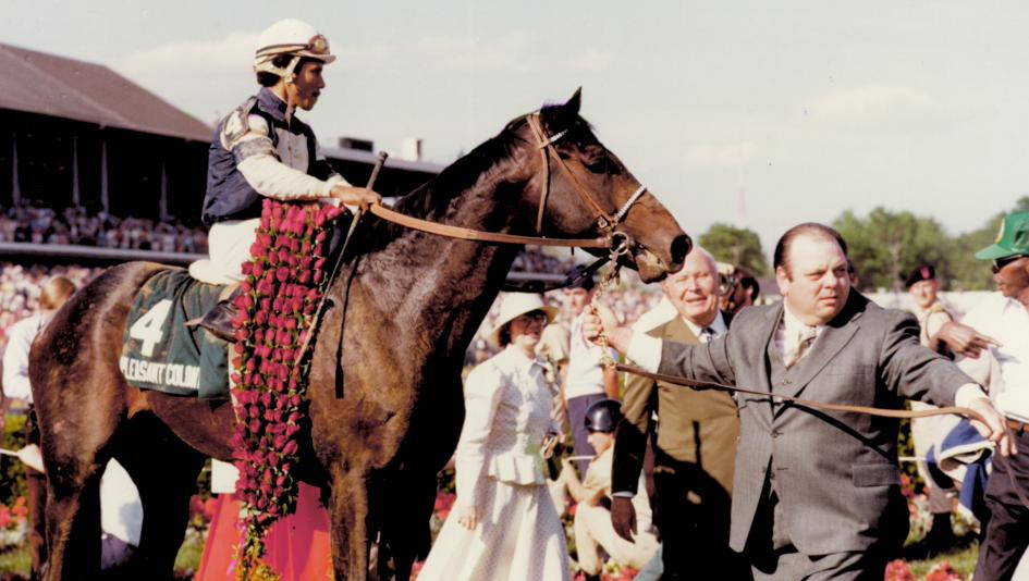Pleasant Colony swept the 1981 Kentucky Derby and Preakness en route to championship honors.