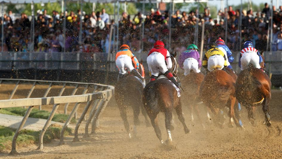At Preakness, the horses who aren't there are the story