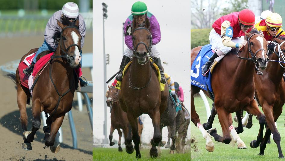 Skywire, Avie's Flatter, and Desert Ride are among the top contenders for Saturday's Queen's Plate.