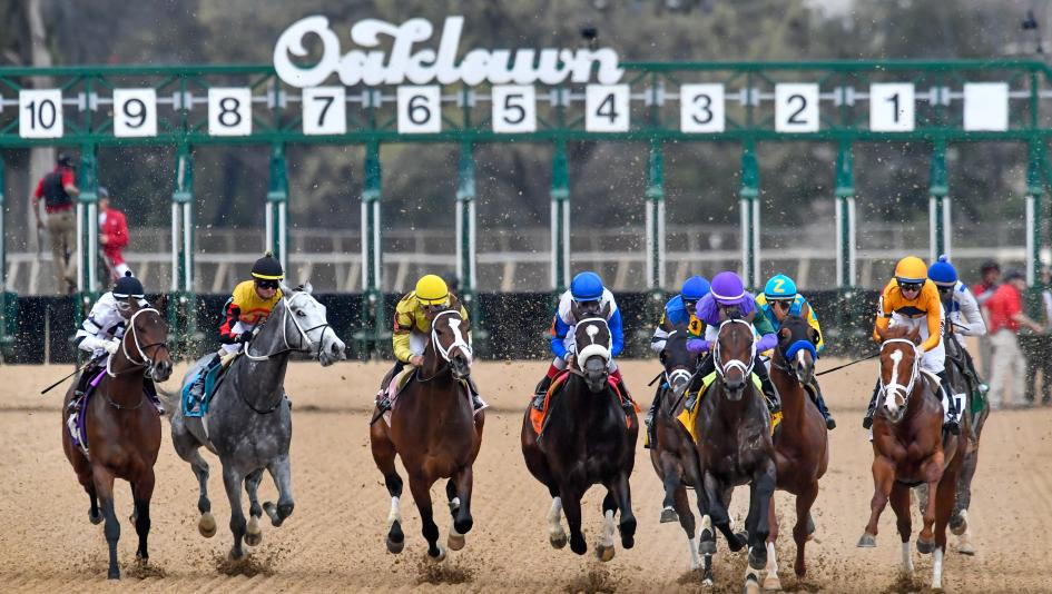 The 2019 Rebel Stakes has attracted a competitive group of 3-year-olds to Oaklawn Park.