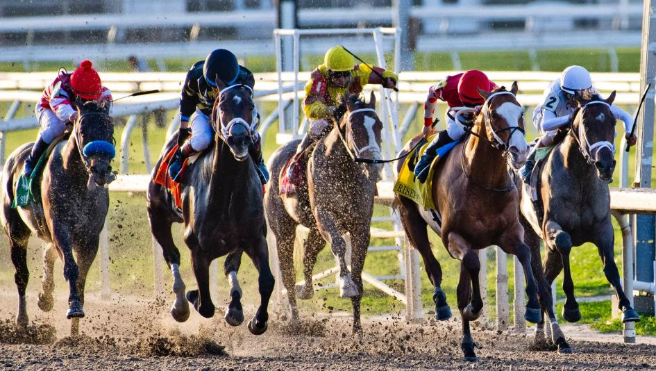 The field for the 2018 Risen Star Stakes races through the stretch, with Bravazo (second from left) eventually prevailing over Snapper Sinclair (second from right) by a nose.