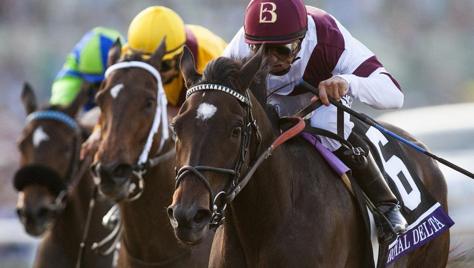 Royal Delta is one of just two horses who won the Breeders' Cup Distaff twice.