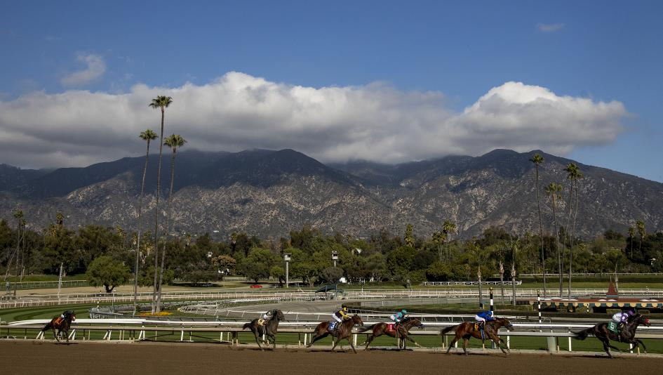 Racing at Santa Anita Park, host of the Robert B. Lewis Stakes on Saturday.