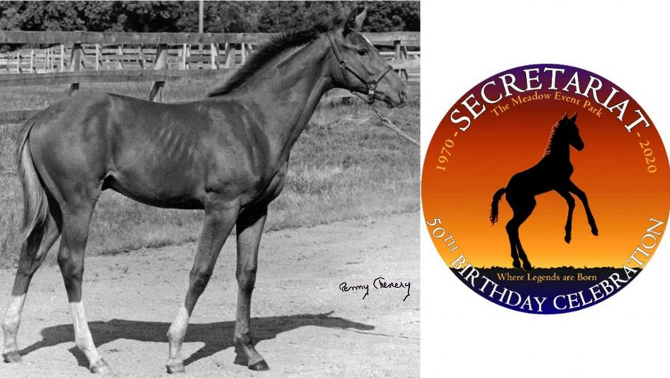 A celebration will be held in honor of the 50th birthday of Secretariat, pictured as a foal at Meadow Stable. The autographed photo will be auctioned in conjunction with the celebration.