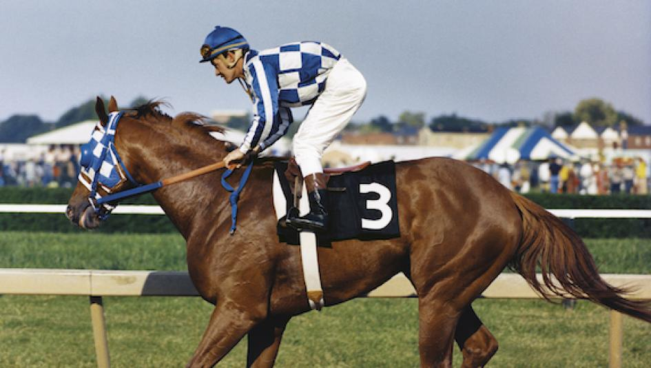 Secretariat and Ron Turcotte after winning the 1973 Preakness stakes.