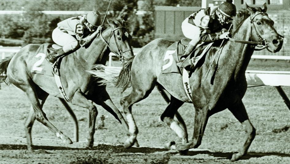 Spectacular Bid defeats Glorioius Song in the 1980 Haskell Handicap.