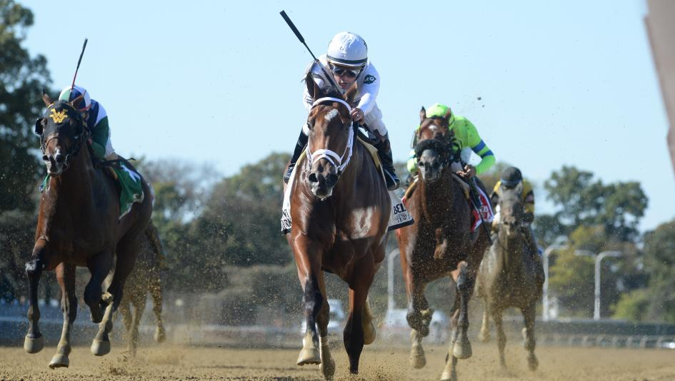 Road to the Breeders' Cup: Three Heating Up, Three Cooling Down
