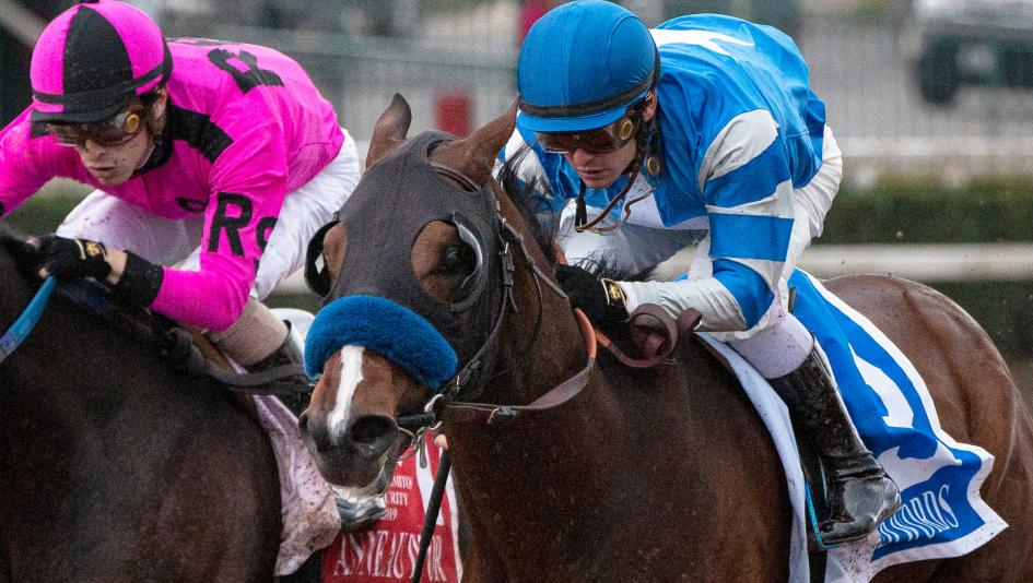 Thousand Words Has Makings of Serious Kentucky Derby Prospect