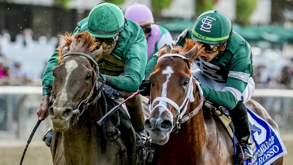 Vino Rosso (right) and Code of Honor impressed in Saturday's Jockey Club Gold Cup.