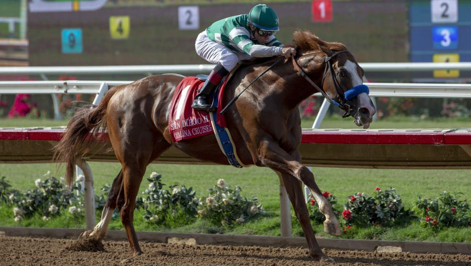 Catalina Cruiser burst onto the Breeders' Cup trail with a San Diego Handicap win.