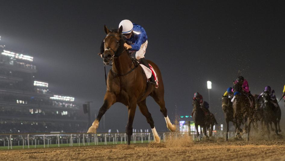 Thunder Snow, pictured winning the 2018 Dubai World Cup, is a top contender for this year's race.