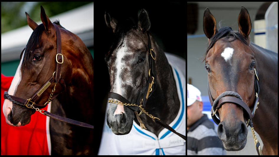 Slideshow Meet The 2019 Belmont Stakes Contenders