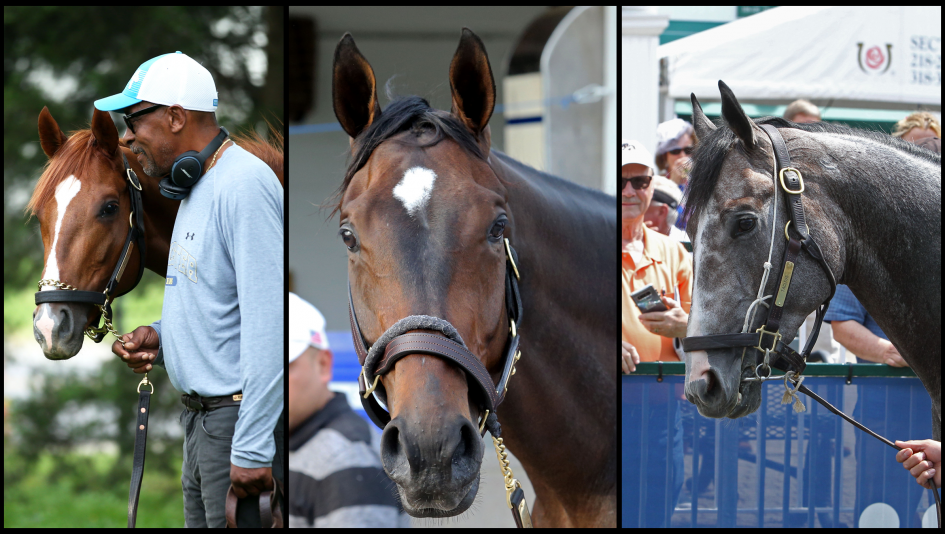 SLIDESHOW: Meet the 2019 Travers Stakes Contenders