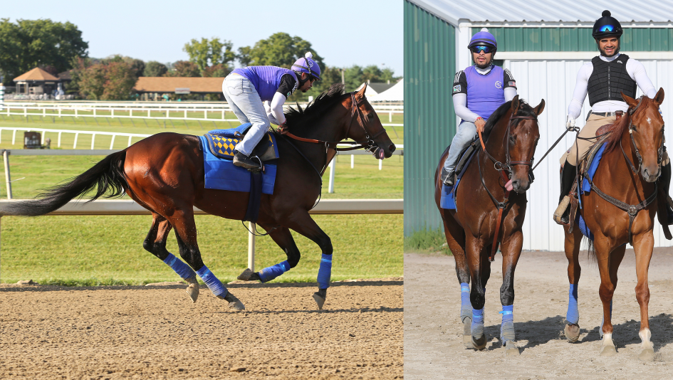 Pennsylvania Derby Pivotal in Wide-Open Race for Champion 3-Year-Old Male