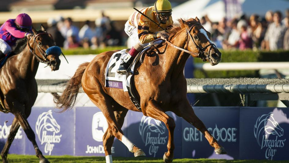 Wise Dan is among the 2020 racing Hall of Fame inductees in his first year of eligibility.