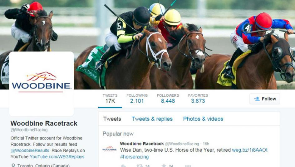 Twitter Accounts to Follow for the 2015 Woodbine Mile
