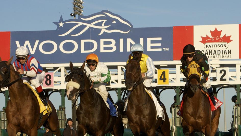 O horse betting 100 football betting tips