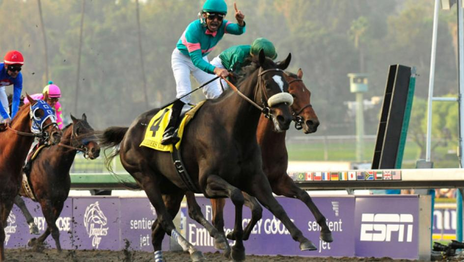 Zenyatta after her victory in the 2009 Breeders' Cup Ladies Classic.