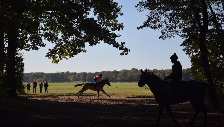 A Visit to France With Flying Start: Unicorns Might Exist