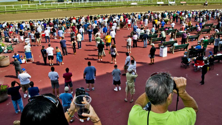 T best bets for belmont