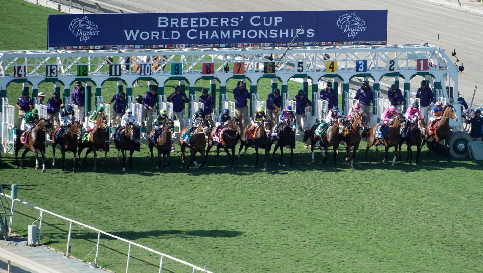 Race Order Wagering Options For 2019 Breeders Cup