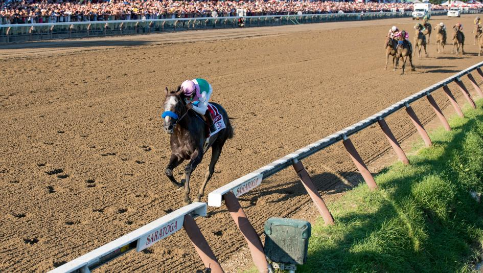Arrogate wins 2016 Travers at Saratoga Race Course with track record