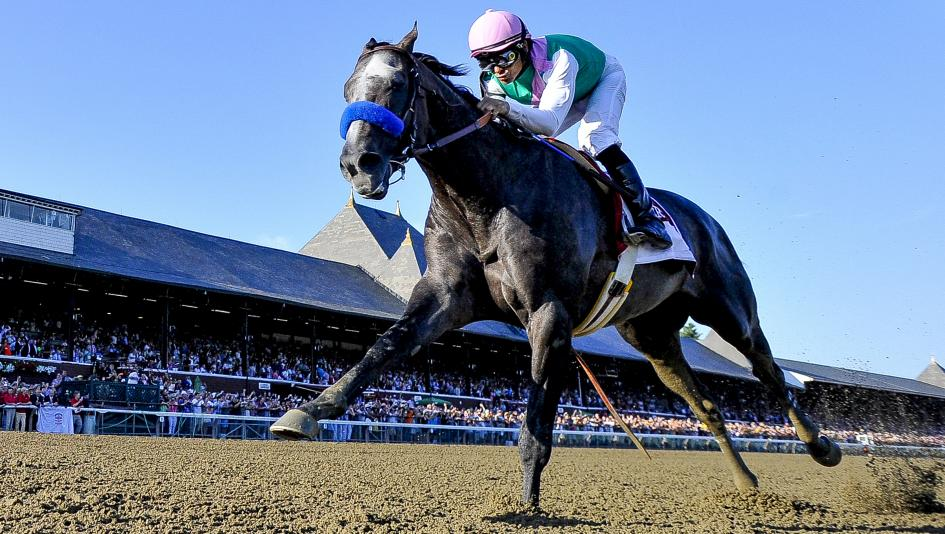 Arrogate's Travers Victory Stirs Up 3-Year-Old Championship Race