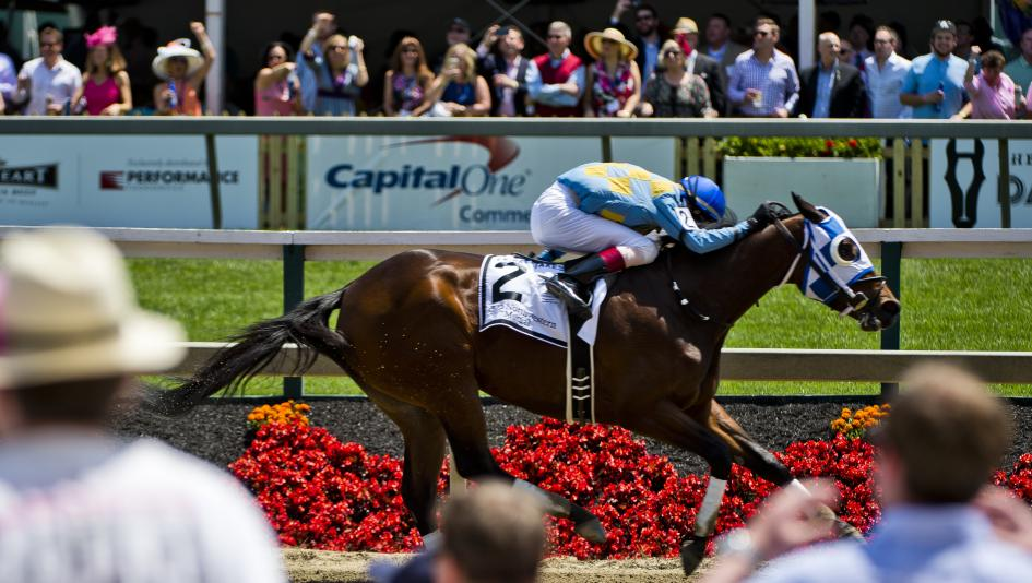 Saratoga S Best Bets For The Preakness - image 5