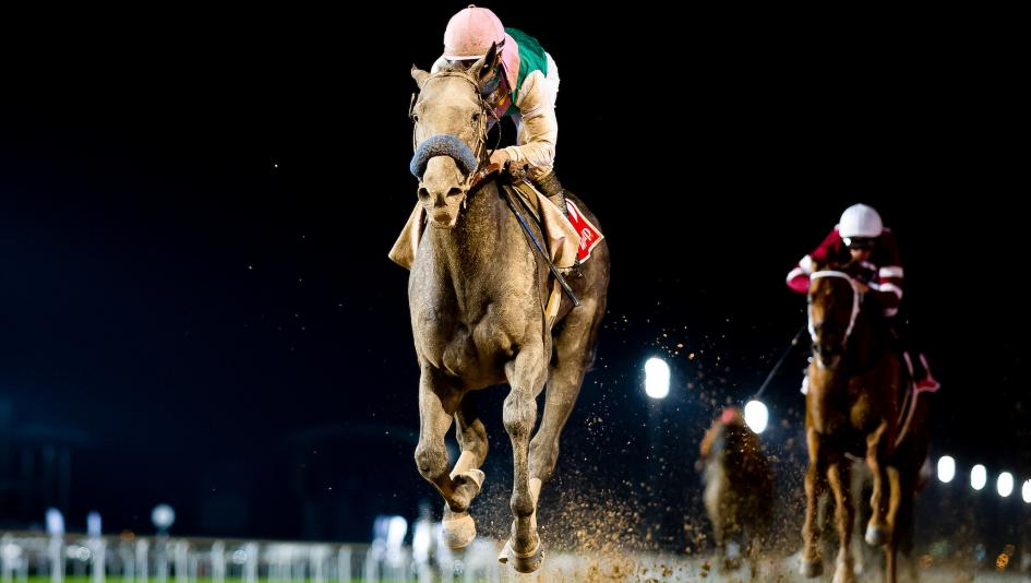 Eight Fast Facts About The 2018 Dubai World Cup America