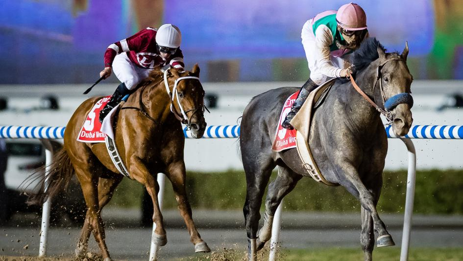 The Main Track: Arrogate the Newest Star in Racing's Golden Era
