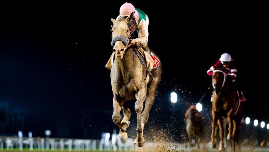 Arrogate Repeats as Longines World's Top-Ranked Racehorse