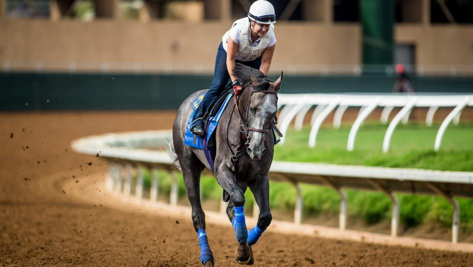 World's 'best' horse Arrogate beaten at $1.10