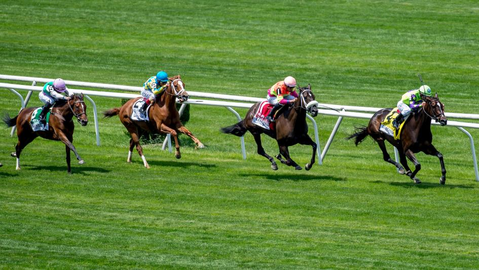 Betting Horse Racing Online: Dos and Don'ts from Team ABR | America's Best  Racing