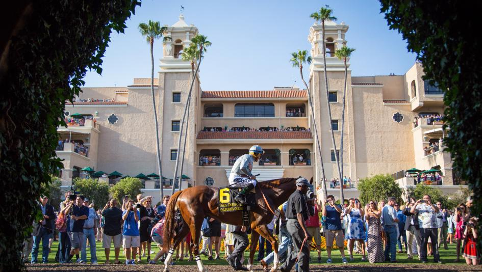 Breeders Cup Trends From Santa Anita Should Translate To