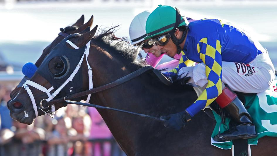 Cutting Humor Wins Sunland Park Derby in Thrilling Finish