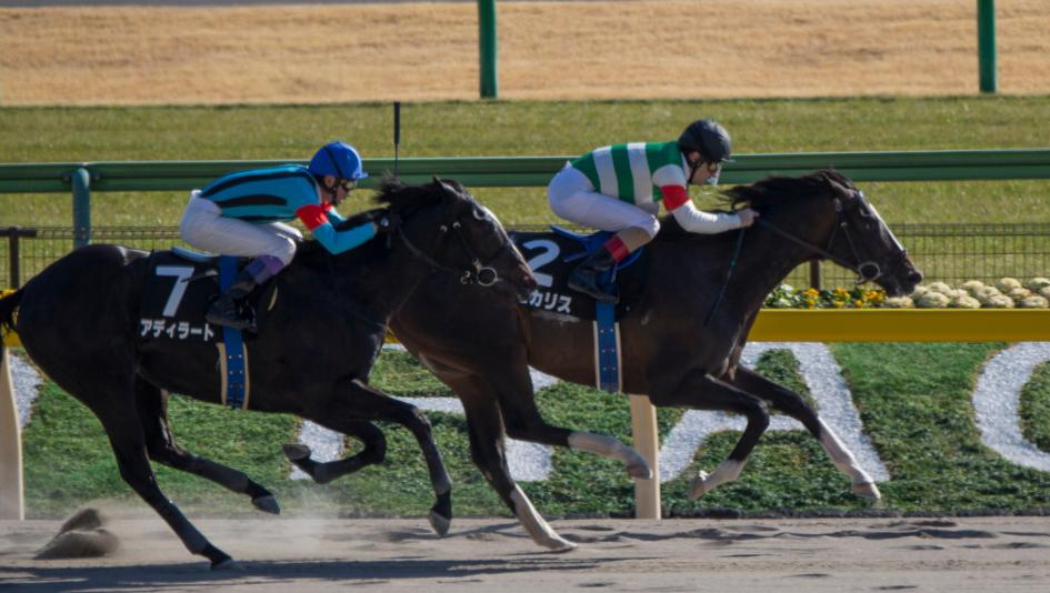 Derby Trail: Three Heating Up, Three Cooling Down for Feb. 22