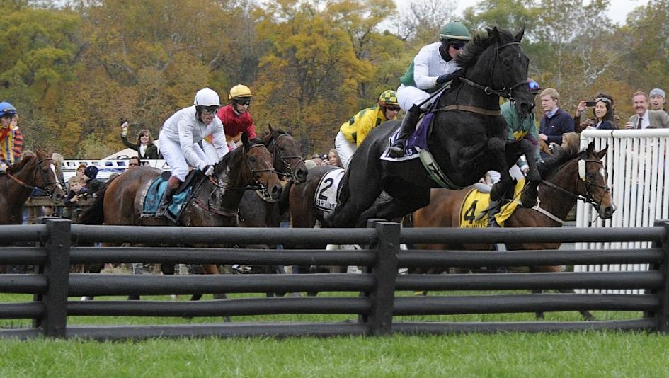 Far hills steeplechase betting aiding and abetting def
