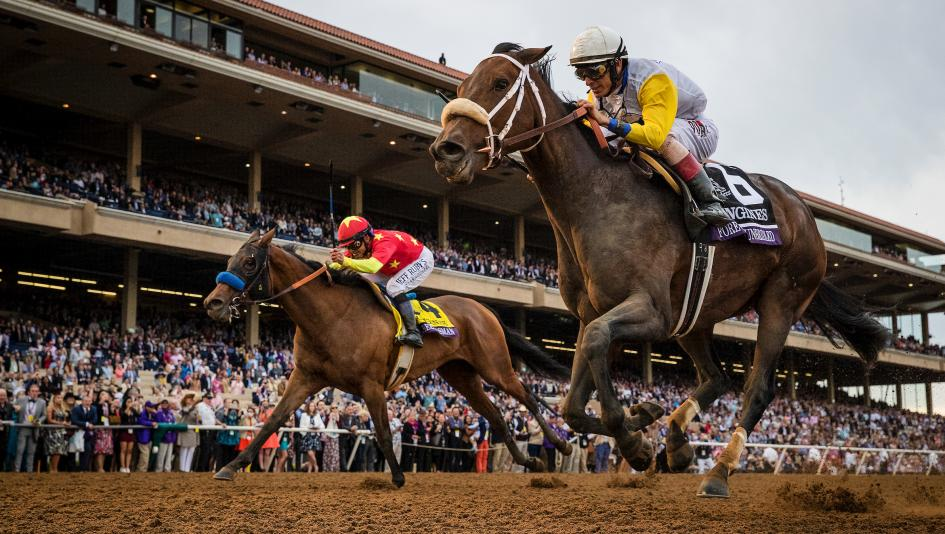 Using History to Handicap the 2019 Breeders' Cup Distaff