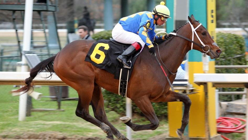 Gold Street Posts Wire-to-Wire Win in Smarty Jones