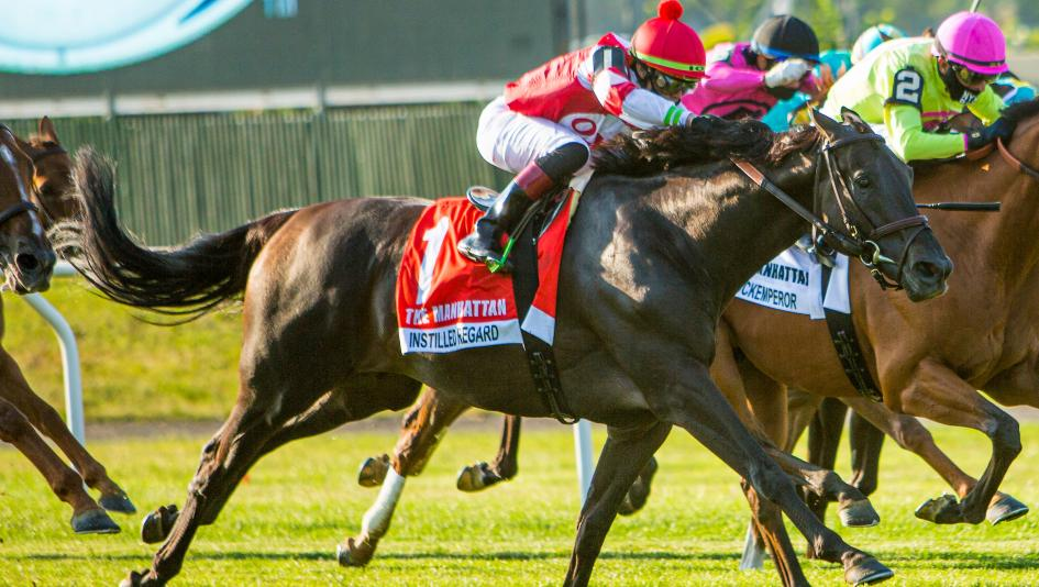 Road to 2020 Breeders' Cup: Three Heating Up, Three Cooling Down for July 8