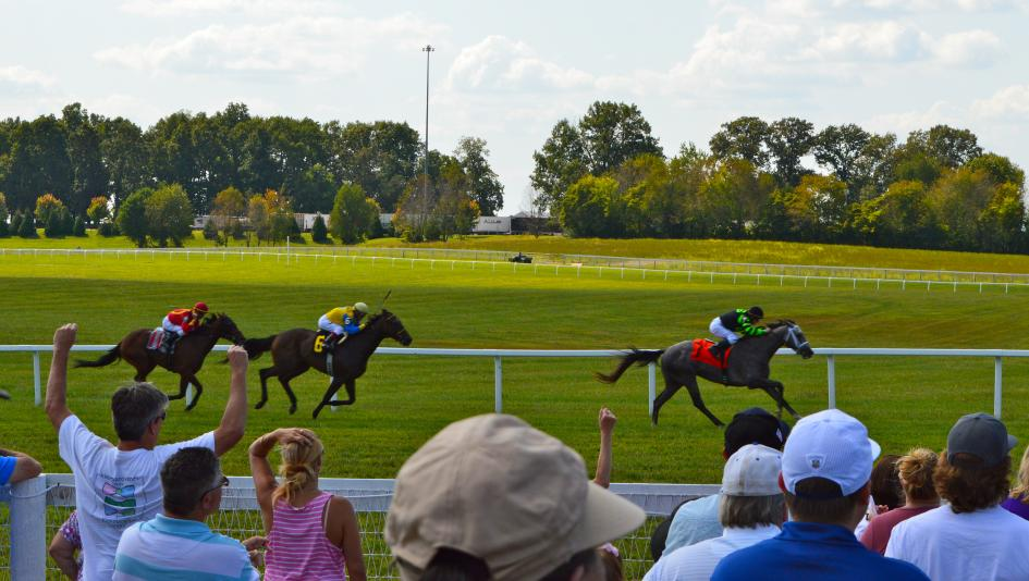 Kentucky Downs Primer: European-Style Turf Course is Racing Fan\'s ...