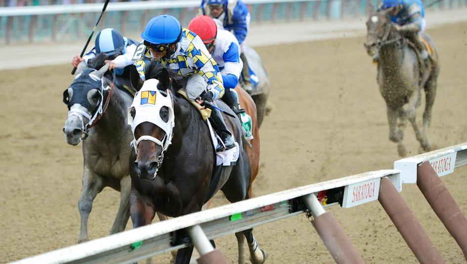 Jim Dandy Stakes by the Numbers