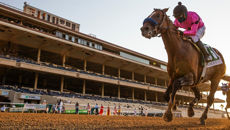 Breeders' Cup Classic Rankings for Sept. 15