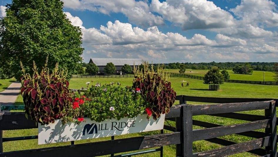 Visit Horse Country: Mill Ridge a Wellspring of Industry Influence