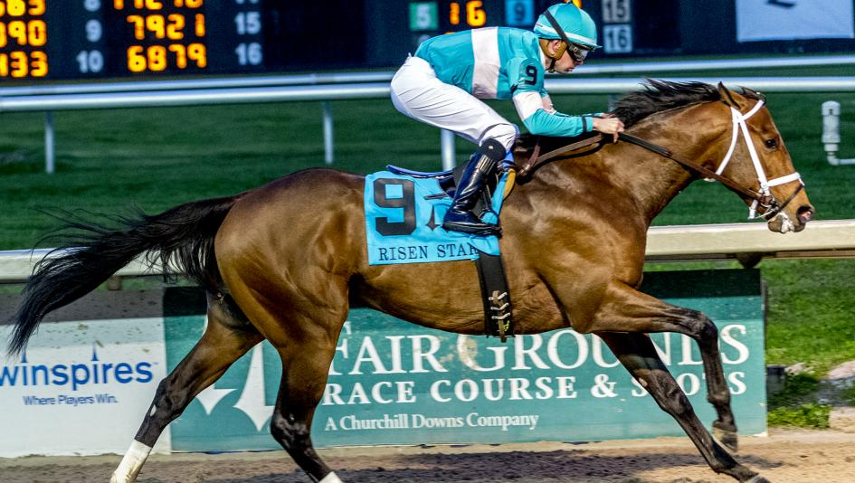 Contender or Pretender: Is Mr. Monomoy a Top Kentucky Derby Candidate?