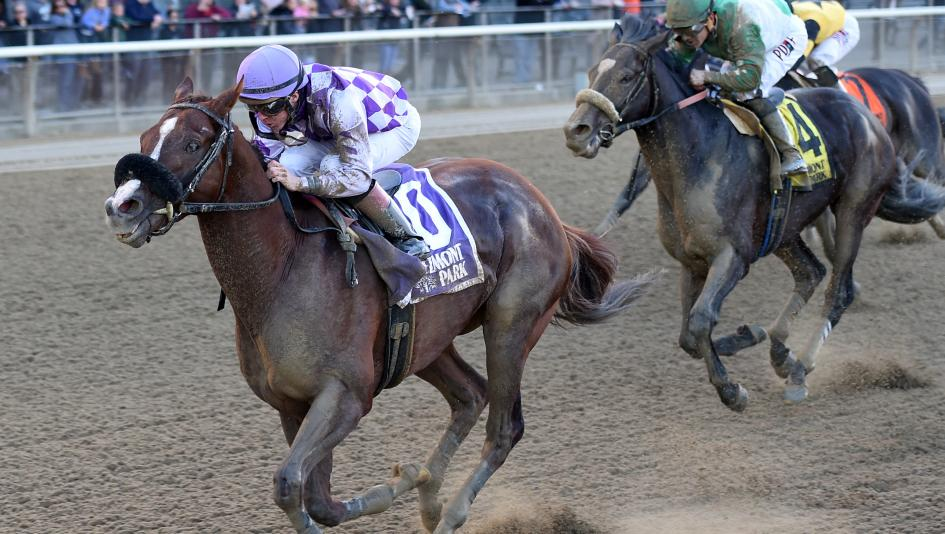 State-bred Stakes Days at Belmont, Pimlico Have a Breeders' Cup Feel