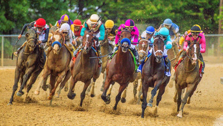 Preakness betting calculator bet on eagles