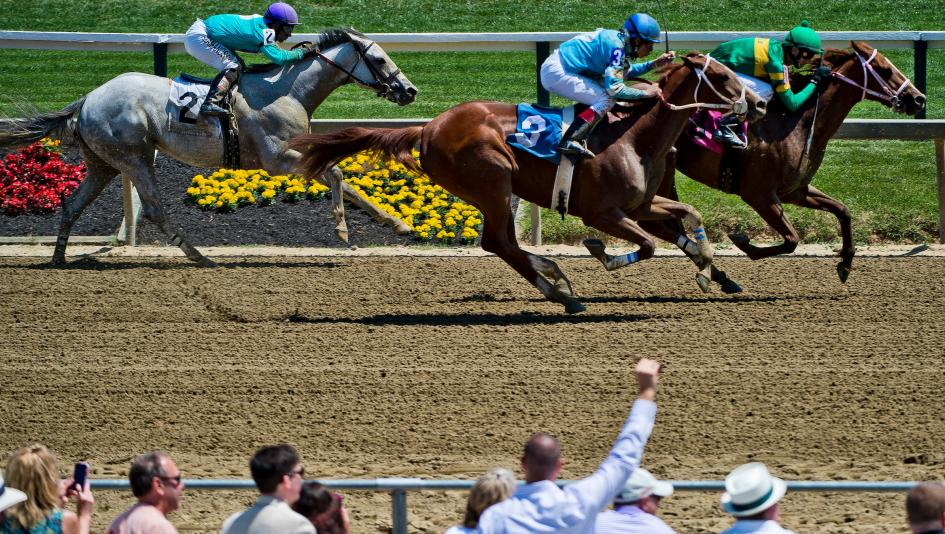 Fresh horses await Derby victor Always Dreaming in Preakness