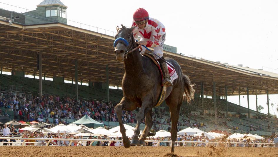Will Roadster Give Baffert His Sixth Kentucky Derby