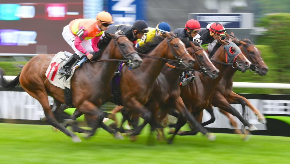 Ten Facts About Racehorses You Need to Know | America's Best